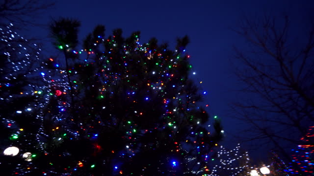 holiday lights on park trees, new mexico - town stock videos & royalty-free footage