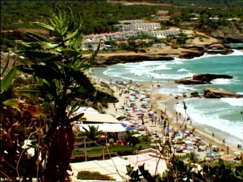 vídeos y material grabado en eventos de stock de ws, focusing, ha, holiday resort, ibiza, spain - palmera abanico