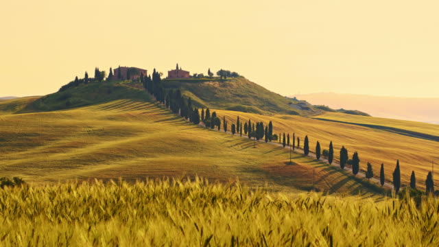ds holiday villa in tuscany - rural scene stock videos & royalty-free footage