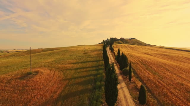 veduta aerea vacanza villa in toscana - collina video stock e b–roll