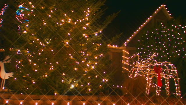 stockvideo's en b-roll-footage met holland, michiganchristmas lawn decorations of a moose and tree lights - decoraties