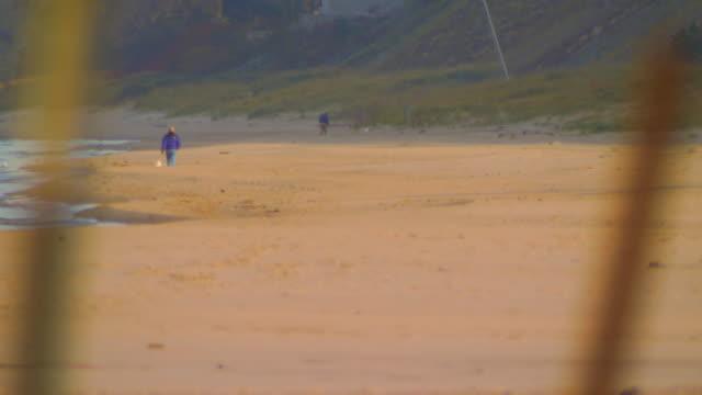 stockvideo's en b-roll-footage met holland, miwalking along shore - onbekend geslacht