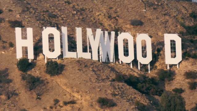 hollwood sign close up with birds flying and landing - glamour stock videos & royalty-free footage