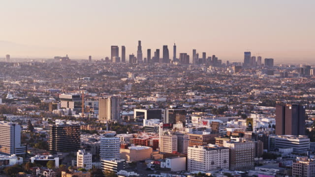 hollywood and downtown los angeles - aerial view - hollywood california stock videos & royalty-free footage