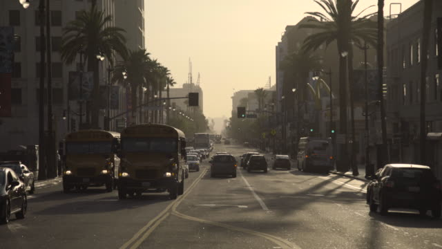 hollywood blvd - boulevard video stock e b–roll