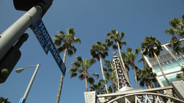 vidéos et rushes de ms la hollywood boulevard sign, palm trees and building against blue sky / los angeles, california, usa - hollywood boulevard