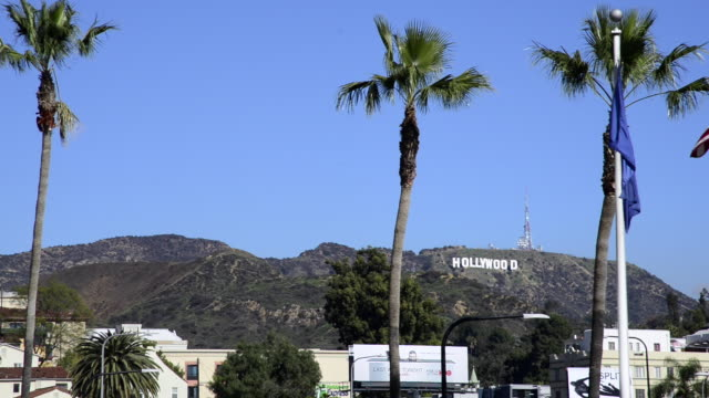 hollywood sign - santa monica sign stock videos & royalty-free footage