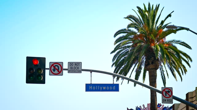 hollywood sign - sunset boulevard stock-videos und b-roll-filmmaterial