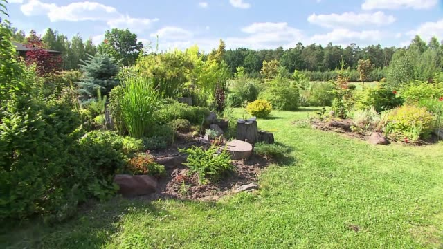 home ecological garden - landscaped stock videos & royalty-free footage