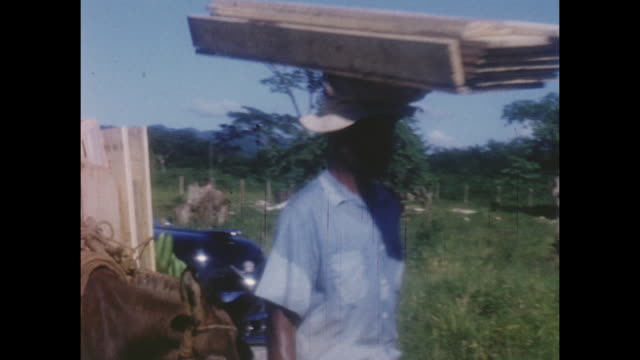 home movie footage circa 1950 of people working in jamaica. - west indies stock videos & royalty-free footage
