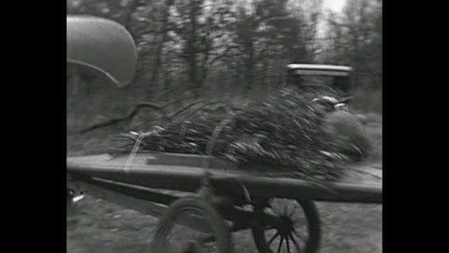 1931 home movie geese hunting trip, vintage cars, man rides canoe in lake/swamp - swamp stock videos & royalty-free footage
