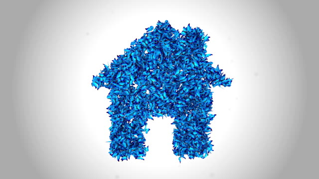 home symbol made by blue butterflies - alpha - animal colour stock videos & royalty-free footage
