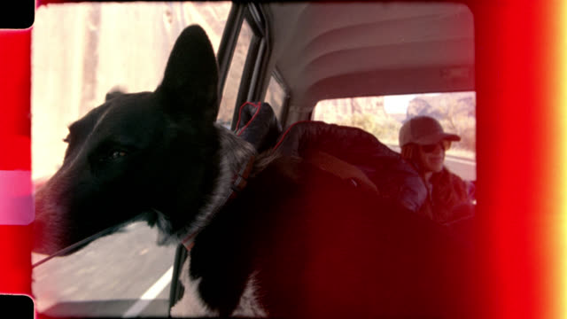 Home video film footage of friends on road trip riding in car as dog sticks head out window.