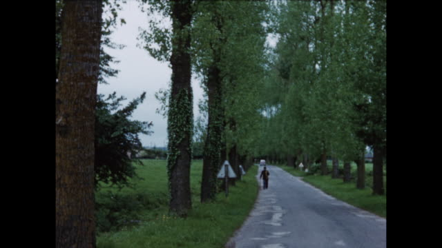 home video footage of a french rural scene including an old thatched roof building circa 1958. - 社会史点の映像素材/bロール