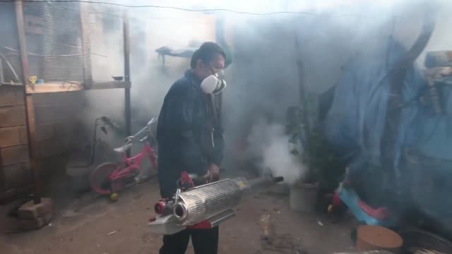 stockvideo's en b-roll-footage met honduran authorities fumigate houses and protect hospitals against the mosquito aedes aegypti after dozens of honduras died from dengue - clean