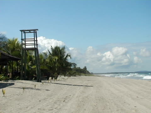 ms, honduras, tela, life guard tower overlooking beach - placca di montaggio fissa video stock e b–roll