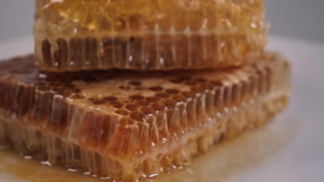 stockvideo's en b-roll-footage met honing en honing kam - animal creation