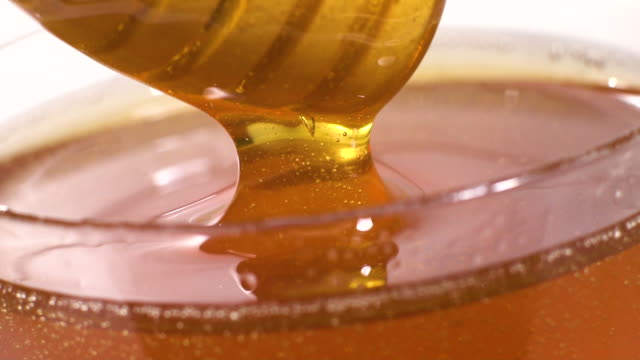 vídeos de stock, filmes e b-roll de mel que mergulha no movimento lento - mel