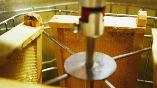 a honey extractor machine spins honeycomb around and uses centrifugal force to remove honey from the comb - honey stock videos & royalty-free footage