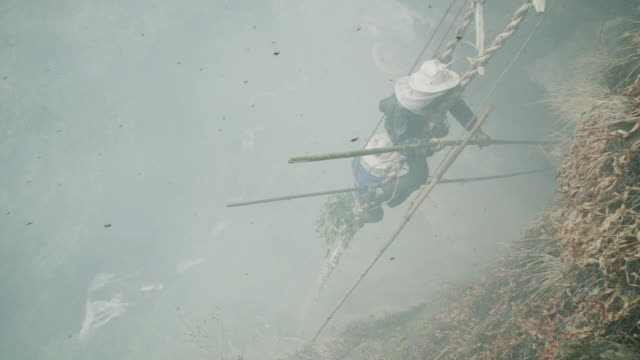 Honey farmers on mountain in Nepal surrounded by bees,slow motion
