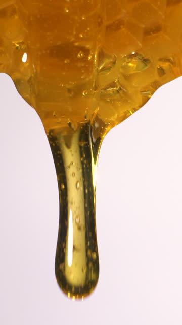 vidéos et rushes de (ralenti et vertical) miel coulant du nid d'abeille - ruche