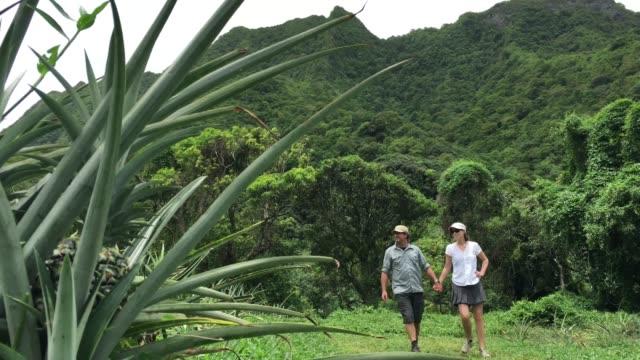 honeymoon couple hiking in the highland of rarotonga cook islands - rarotonga stock videos & royalty-free footage