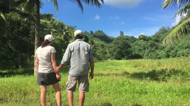 honeymoon couple hiking on the cross island track of rarotonga, cook islands - rarotonga stock videos & royalty-free footage