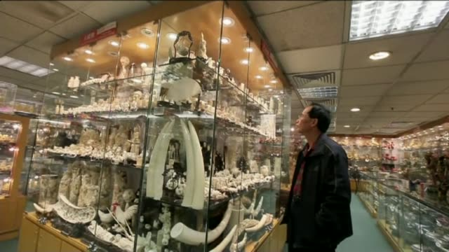 all ivory sales to be banned t11021408 / 1122014 ivory products on display in shop carved ivory on display - 象牙点の映像素材/bロール