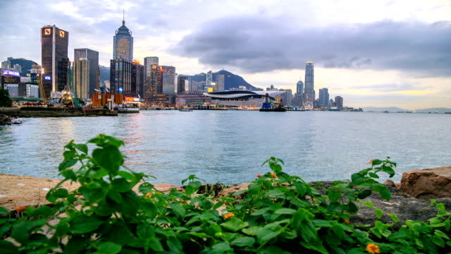 hong kong city with foreground - wanchai stock videos and b-roll footage