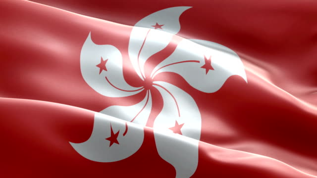 hong kong flag - hong kong flag stock videos & royalty-free footage
