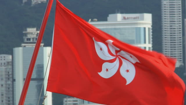 cu hong kong flag with downtown skyline behind / hong kong, china - hong kong flag stock videos & royalty-free footage