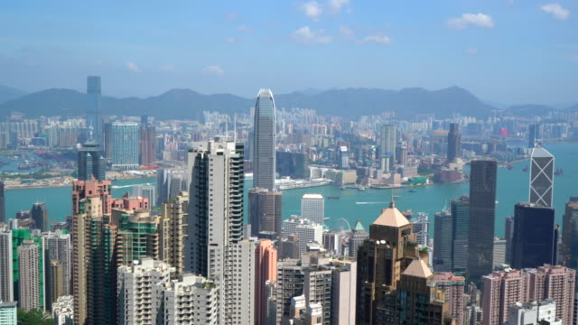 hong kong skyline from victoria peak - victoria harbour hong kong stock videos & royalty-free footage