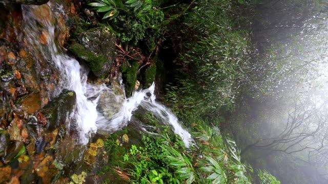 Hongtan Wasserfälle in der urzeitlichen Regenwald