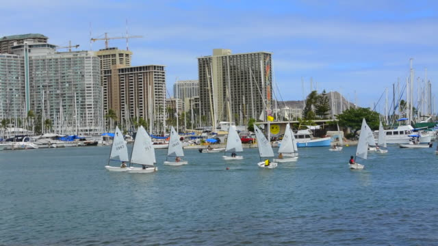 honolulu hawaii oahu skyline from boat marina with sailboats school on small sailboats boating in yacht club - honolulu stock videos and b-roll footage