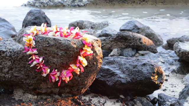 Honolulu Hawaii Oahu Waikiki Beach lei on surf rocks and waves romance of Hawaii, Come to hawaii