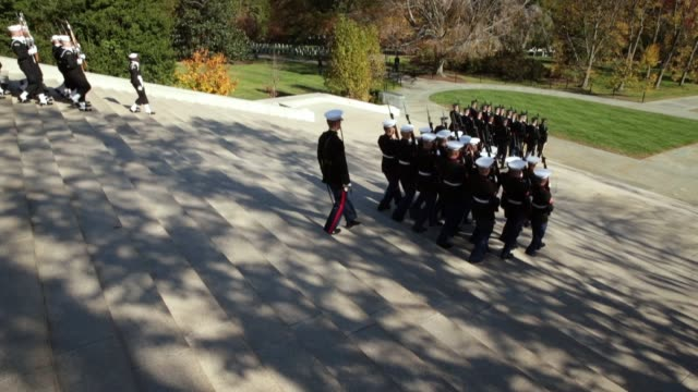 vídeos de stock, filmes e b-roll de honor guards from all the branches of the us military march away after participating in the full honors wreathlaying ceremony at the tomb of the... - ramo parte de uma planta