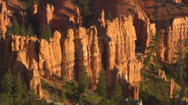 Hoodoos and trees Available in HD.