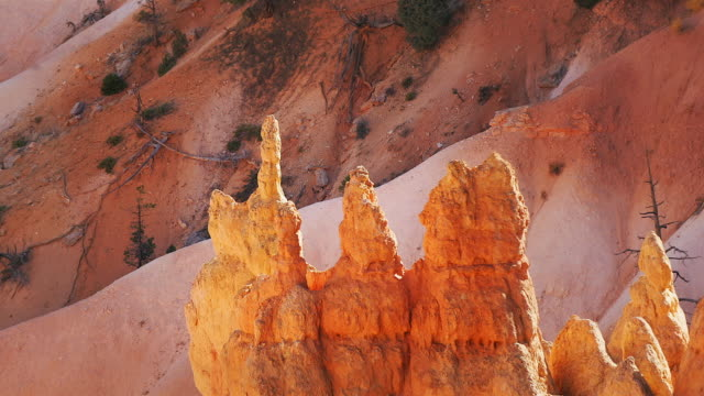 Hoodoos rise on a mountainside at Sunrise Point in Bryce Canyon National Park, Utah.