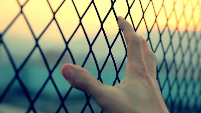 自由の命を願う - 檻点の映像素材/bロール