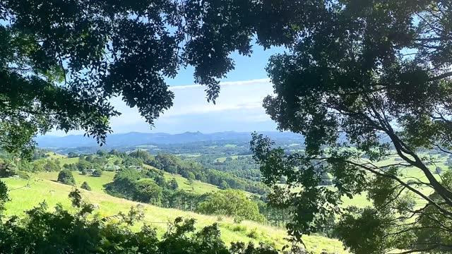 horizon mountain views through breezy trees - rural scene stock videos & royalty-free footage