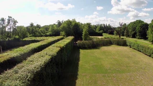 vídeos y material grabado en eventos de stock de hornbeam and lime tree espalier in nieborow park - árbol de hoja caduca