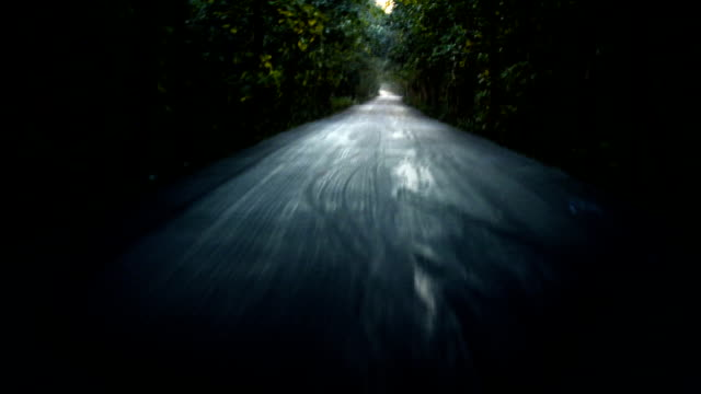 horror driveway at night - woodland stock videos & royalty-free footage