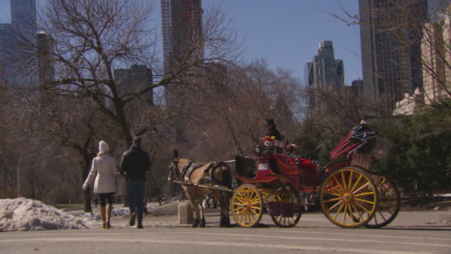 Horse and carriage in Central Park New York skyline in the back ground snow built up on the side of the road– Couple walk towards the carriage /...