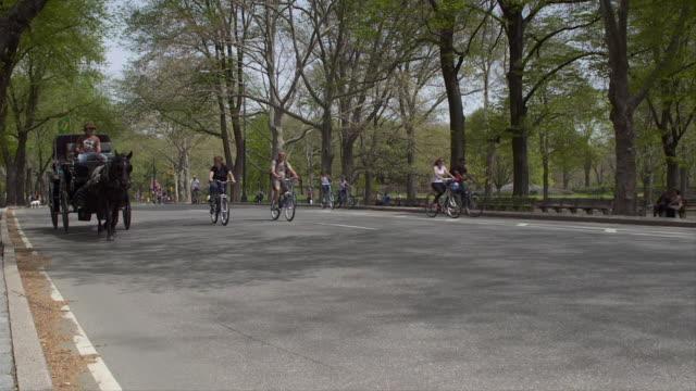 vídeos de stock, filmes e b-roll de a horse and carriage travels through central park.  bikers travel through the park. - artigo de vestuário para cabeça