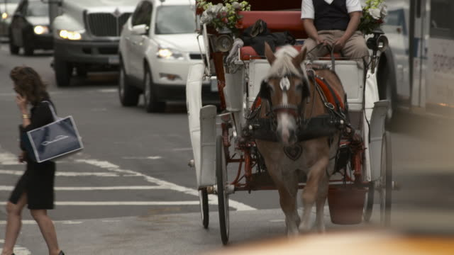 vidéos et rushes de a horse and carriage turns left and heads down 60th street towards the park - voiture attelée