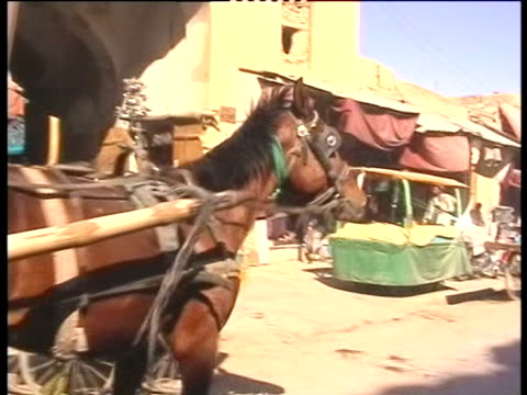 stockvideo's en b-roll-footage met a horse and cart moves through a kabul marketplace - paardachtigen