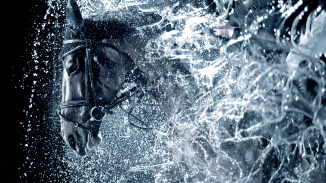 SLO MO Horse and his rider running through a waterfall