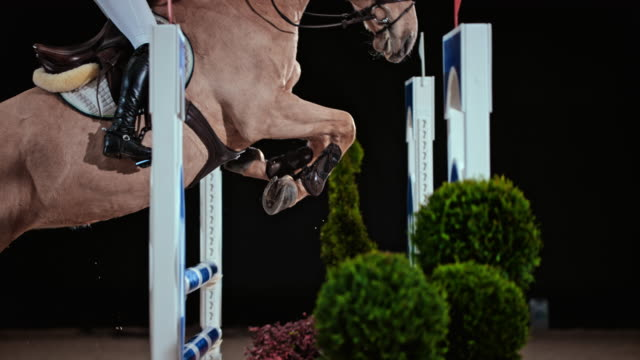 SLO MO Horse and it's rider jumping over an oxer