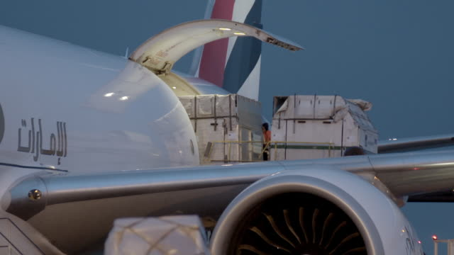 horse boxes are loaded onto a cargo plane - loading stock videos & royalty-free footage