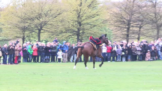 a horse breaks free and enjoys the opportunity as the king's troop royal horse artillery mark the queen's 86th birthday queen elizabeth ii 86th... - royal horse artillery stock videos and b-roll footage